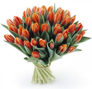 1289821479_tulipany_bukiet7_205